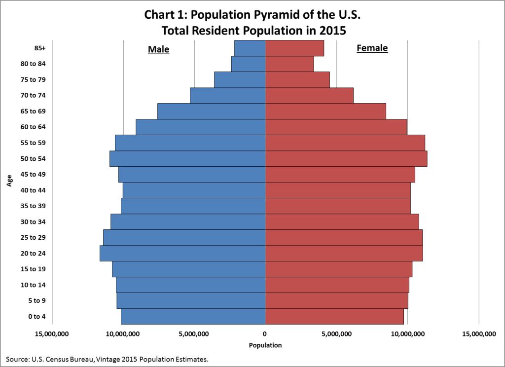 population_pyramid_US_2015